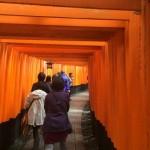 外国人に人気の日本の観光スポット第1位の場所のガイドツアー!