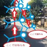 紅葉に負けず劣らずの素晴らしい新緑!東福寺ガイドツアー開催しました!