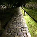 幻想的な夜!一休寺のライトアップイベントへ行って来ました!