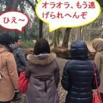 京都マラソンが行われる中、縁結びツアー開催!京都市左京区の下鴨神社周辺ツアー