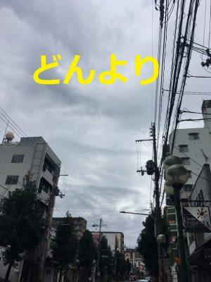 img_4561