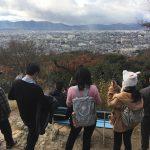 【京都土曜サスペンス】ヒゲツアーと伏見稲荷ツアーに犯人が潜伏!?